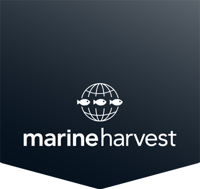 Marine Harvest Scotland
